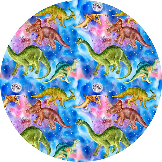 # 8.19-21 Dinosaurs in space
