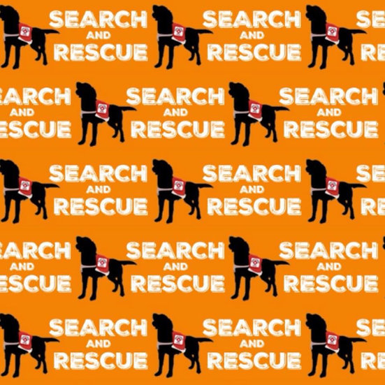 5.110 SEARCH AND RESCUE