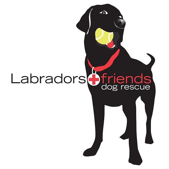 Labradors & Friends Dog Rescue
