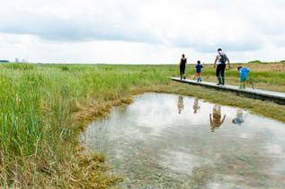 Verdronken Land van Saeftinghe voor Sigmaplan