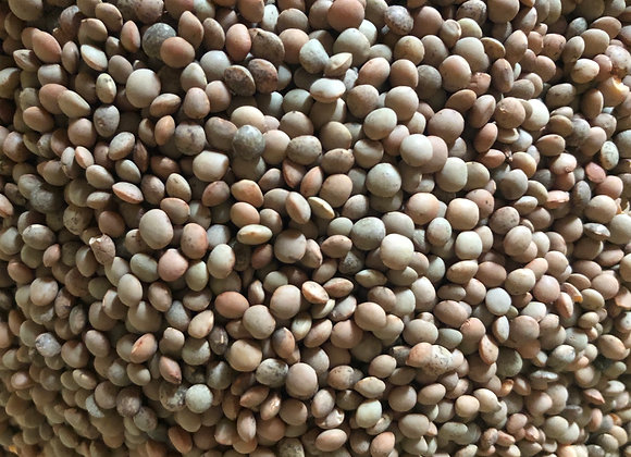 LENTIL (Masor) - 100% Naturally grown, chemical and pesticide free (1 kg)