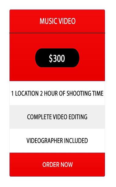 MUSIC VIDEO $300.jpg