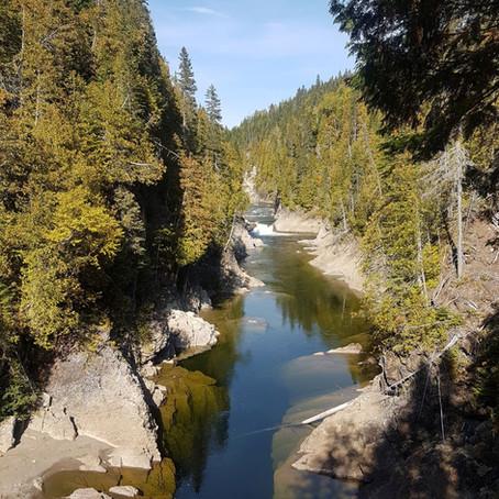 Un plan pour les milieux humides et hydriques de la MRC