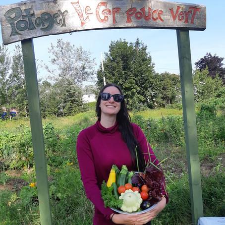 Consultation publique : Gaspé, Ville nourricière