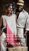 David André Collection