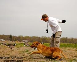 dog training-83 edit