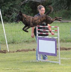 maicoh hurdle-1