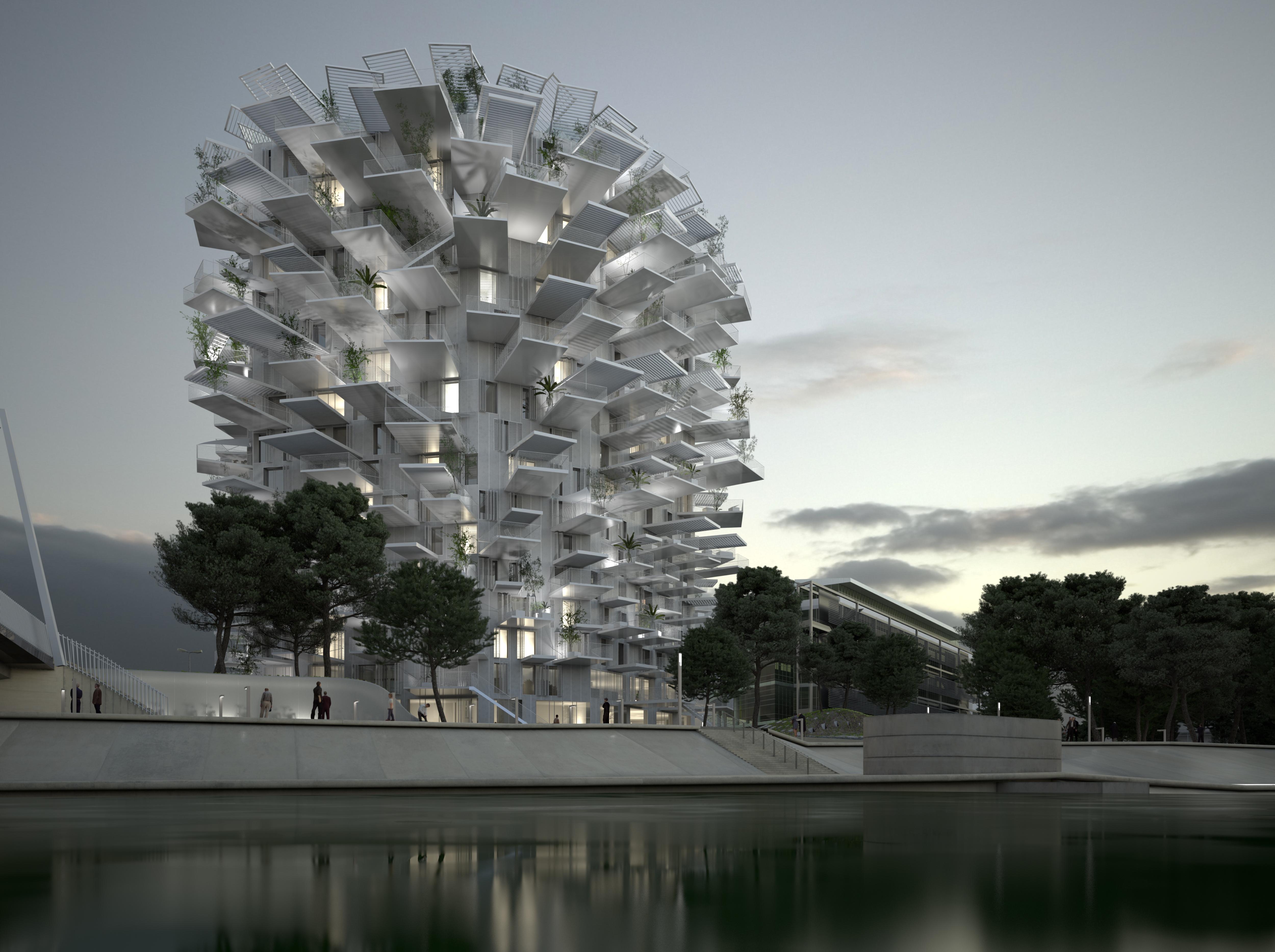 L'Arbre Blanc Montpellier
