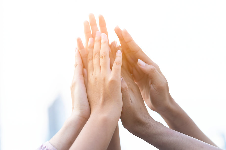Group of diversity people volunteer succ