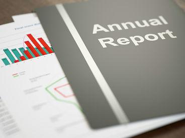 Generic-annual-report.jpg