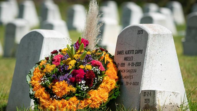"""Usuarios de Gayosso podrán enviar flores por medio de """"Lazos"""""""