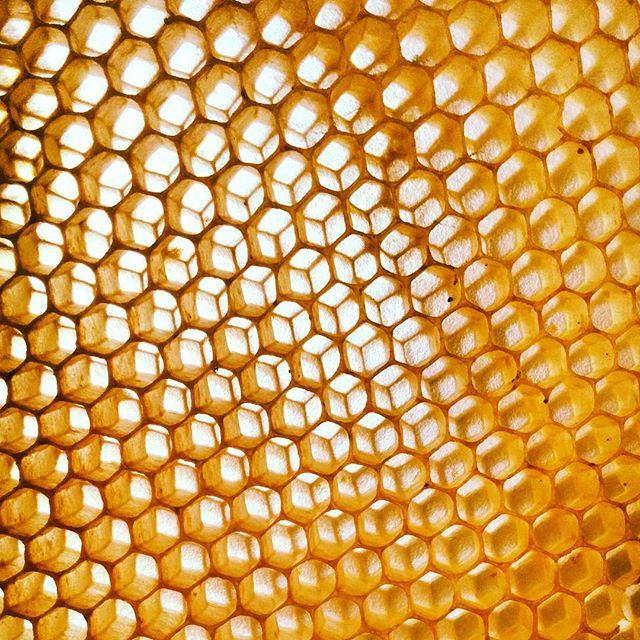 #honeycomb #sacredgeometry #patterns #na