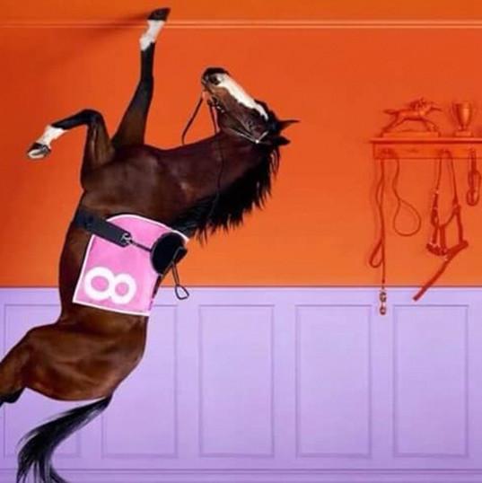 slide-1-horse-film-tv.jpg