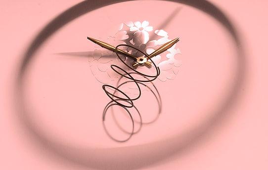 springfrwrd1a_pink_14x8.8_72.jpg