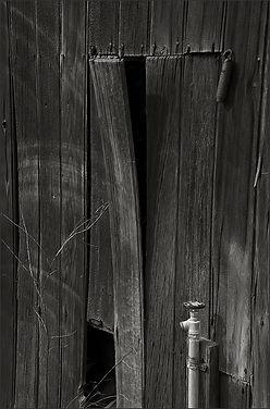 Spring-Board by Bay Area fine art photographer Scott Lockwood