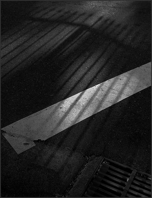 IRON FENCE SHADOWS ON STREET - B&W photograph by fine art photographer Scott Lockwood.