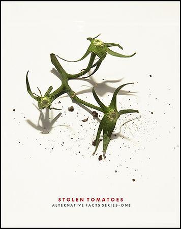 stolen-tomatoes1ee+smltype_6x8_72.jpg