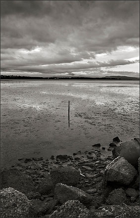 STICK IN THE MUD - B+W photograph by fine art photographer Scott Lockwood of a single stick in San Pablo Bay mud flats at low tide.