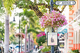 Colorful-flowerpot-hanging-basket-on-ave