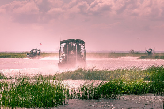 Everglades-airboat-ride-in-South-Florida