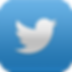 twitter_neue_ios_icon_by_theintenseplayer-d5fwil3.png