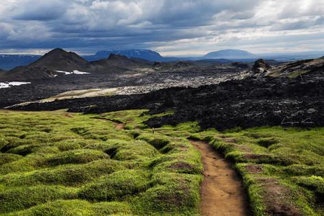 Gras und Lavafelder
