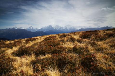 Berner Alpenpanorama