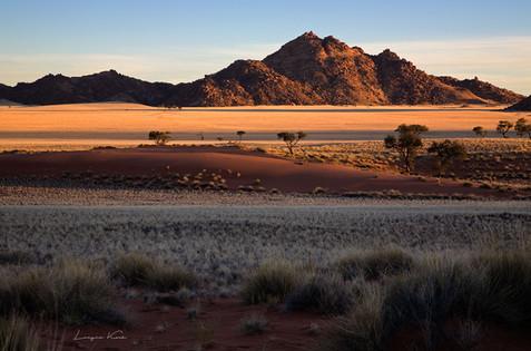 Abends in der Wüste
