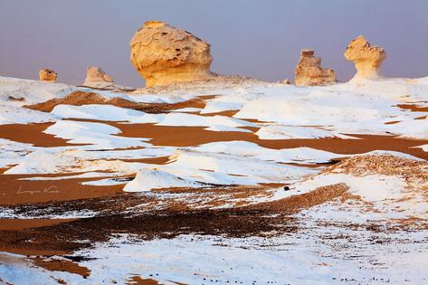 Packeis (Kalkstein) im roten Sand