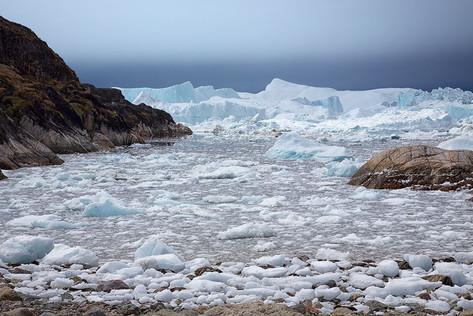 Eisberge am Kangia Eisfjord