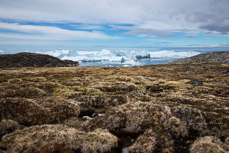 Landschaft am Eisfjord