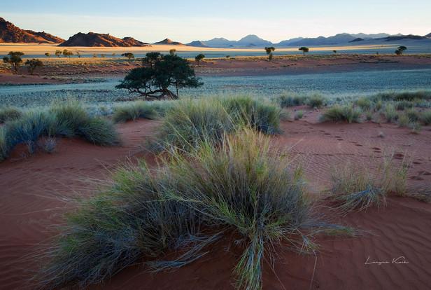 Die Farben der Wüste