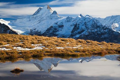 Grindelwald - First, Berner Oberland (Schweiz)