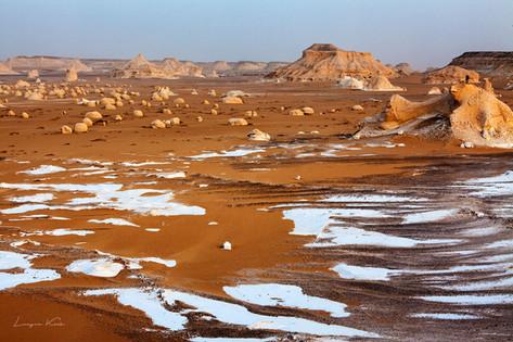 Kalkstein im Sand