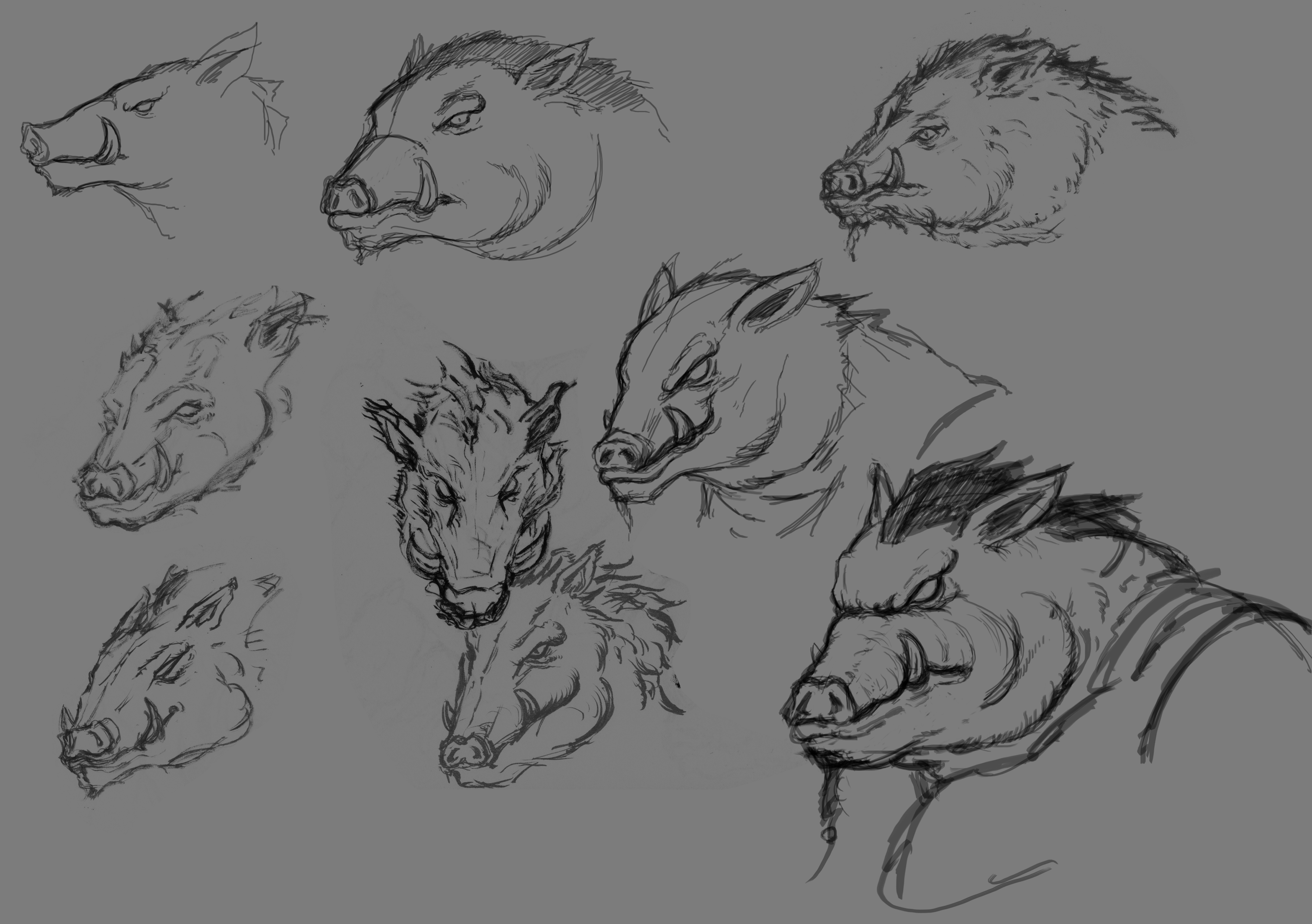 Boar_Character Sheet 1