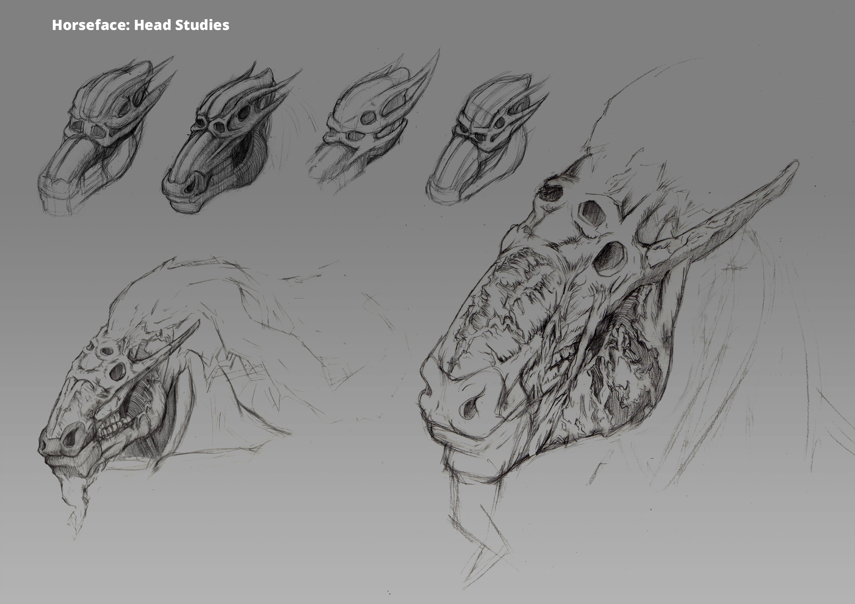 Horseface: Head Studies