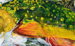 """Brook Trout Abstract 30""""x48"""" $4,300"""