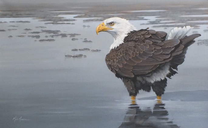 "Eagle 30""x48"" SOLD"