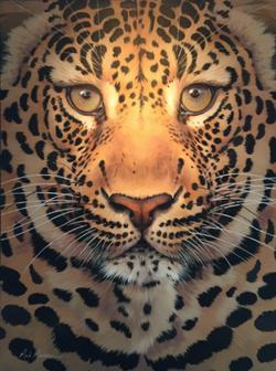 """Leopard, 40""""x30"""" $8,200"""