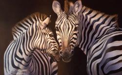 "Zebras 30""x48"" SOLD"