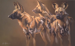 African Wild Dogs SOLD