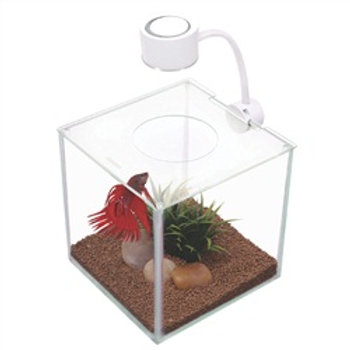 Aquarium équipé Cubus Marina pour betta, 3,4 L (0,9 gal US)