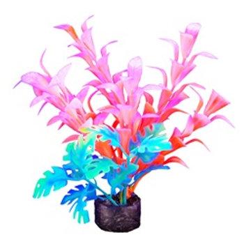 Plante orangée et verte Marina iGlo 5.5po