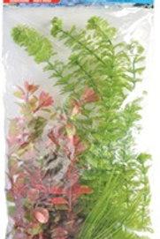 Assortiment de plantes variées AquaScaper Marina (4)