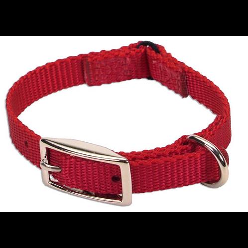 Collier avec attache style ceinture Coastal rouge