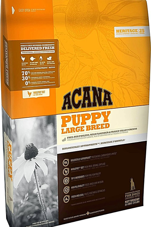 Nourriture chiot grande race héritage sans grains Acana 11.4kg