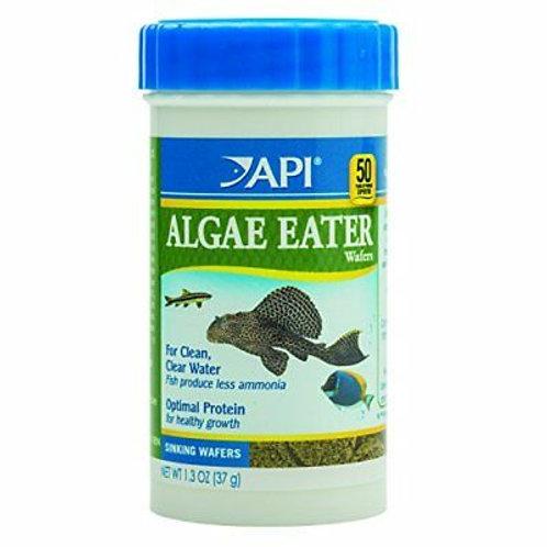 Pastilles d'algues pour poissons de fond API 37gr