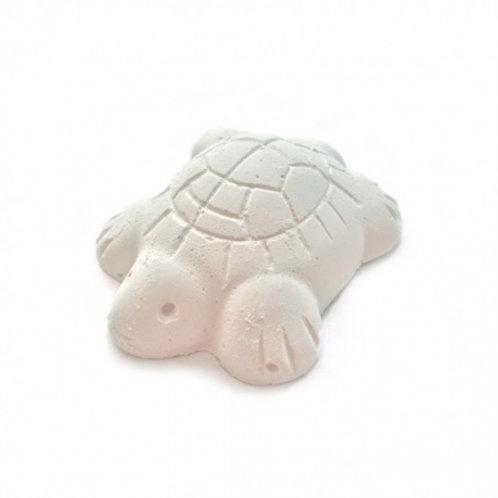 Nourriture vacances pour tortues RIGA