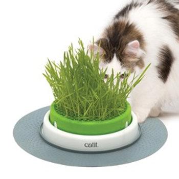 Jardinière d'herbe à chat CatIt Senses 2.0