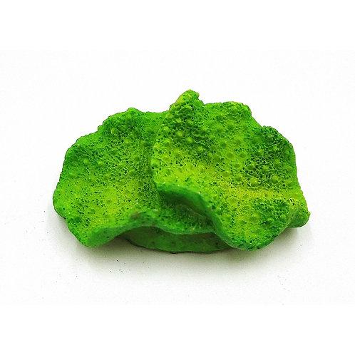 Ornement très petit corail vert Aqua-Fit